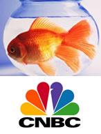CNBC_KimptonHotelFish